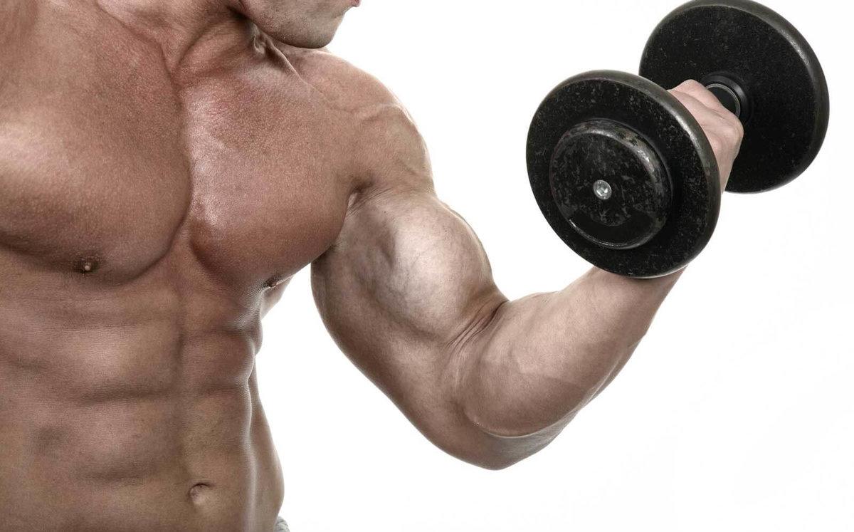 Как накачать бицепс и плечи: эффективная программа тренировок