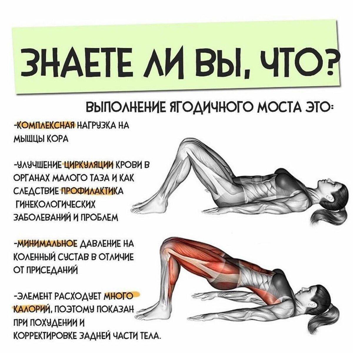 Мышцы кора: тренируем свой центр