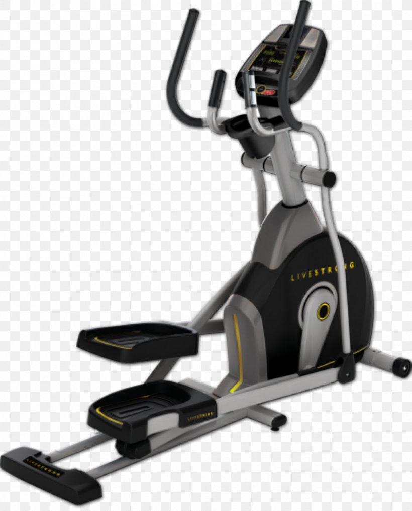 Что выбрать — эллиптический тренажер или беговую дорожку: лучший выбор для занятий спортом
