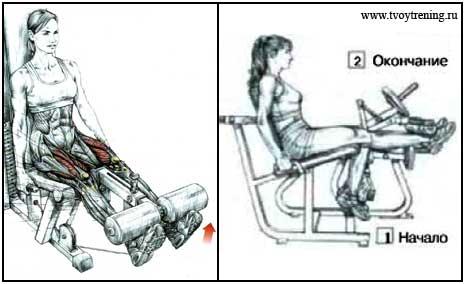Как делать сведение ног в тренажере сидя