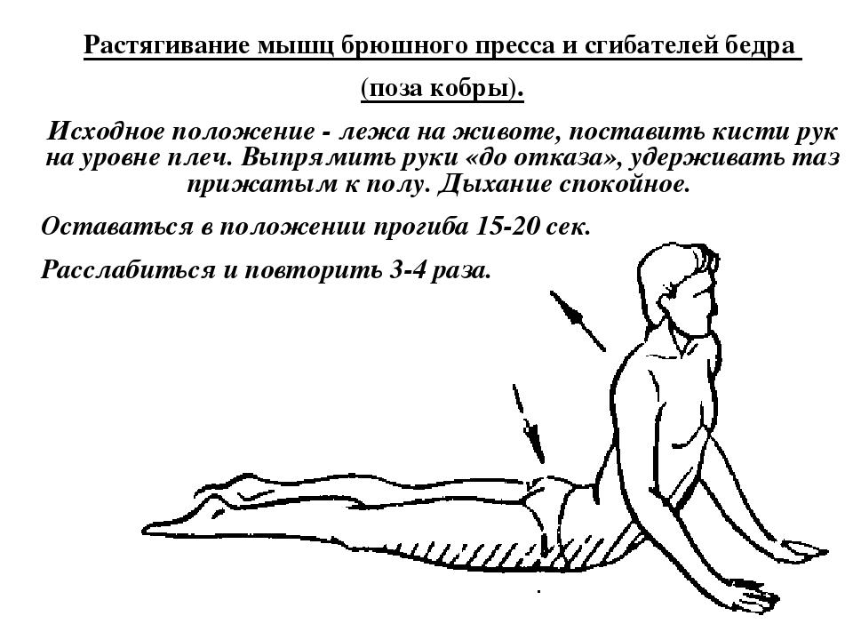 50 упражнений для растяжки мышц всего тела - женский журнал