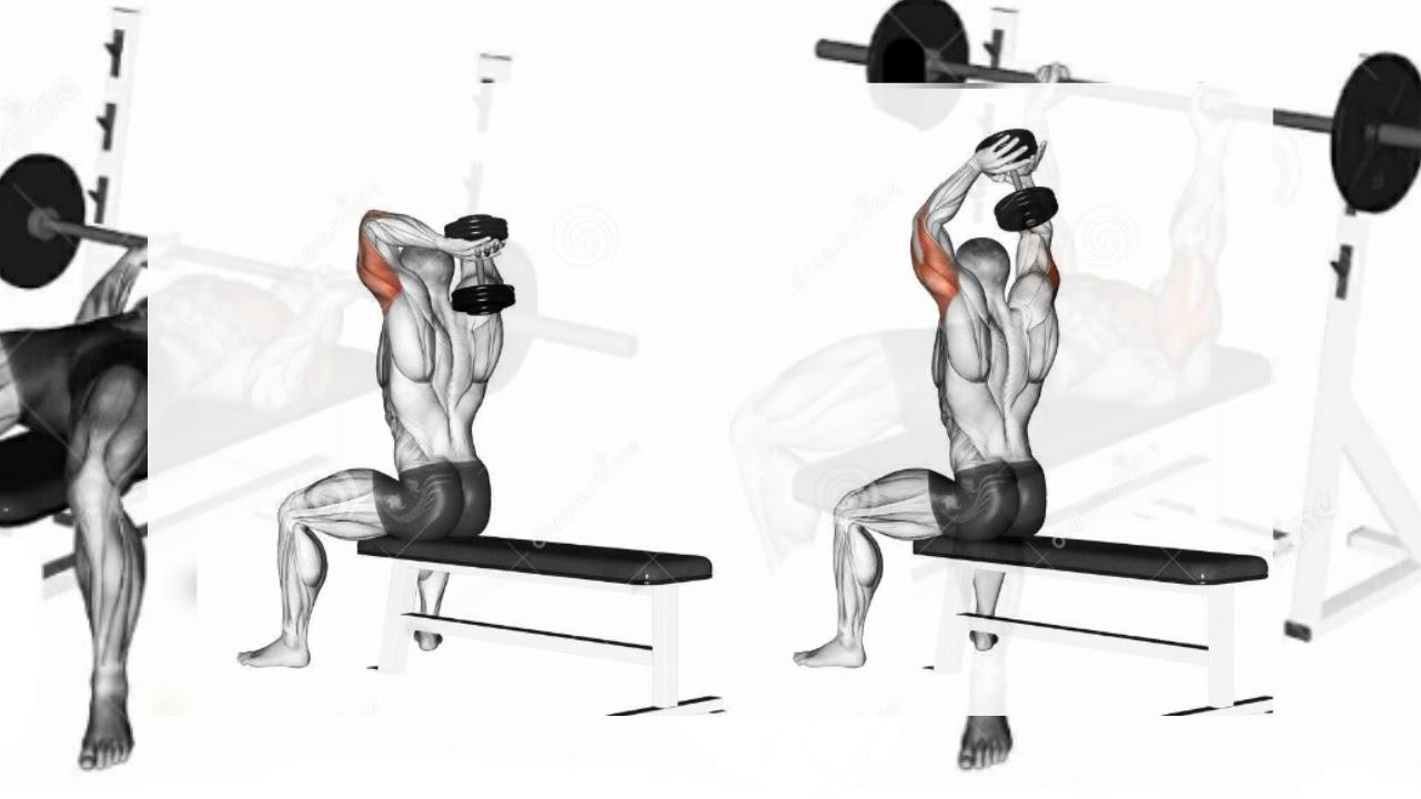 Жим штанги из-за головы: техника стоя, сидя и в смите, польза и вред