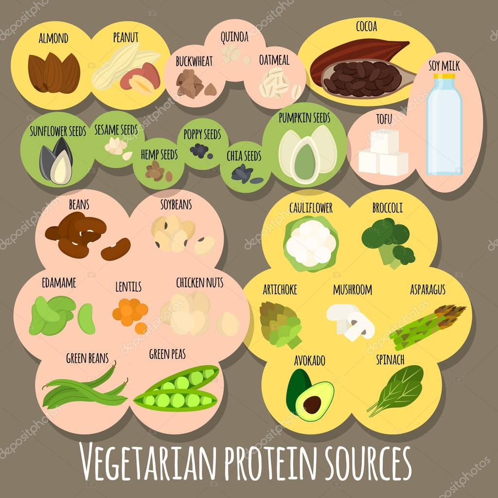 26 лучших вегетарианских продуктов источников растительного белка