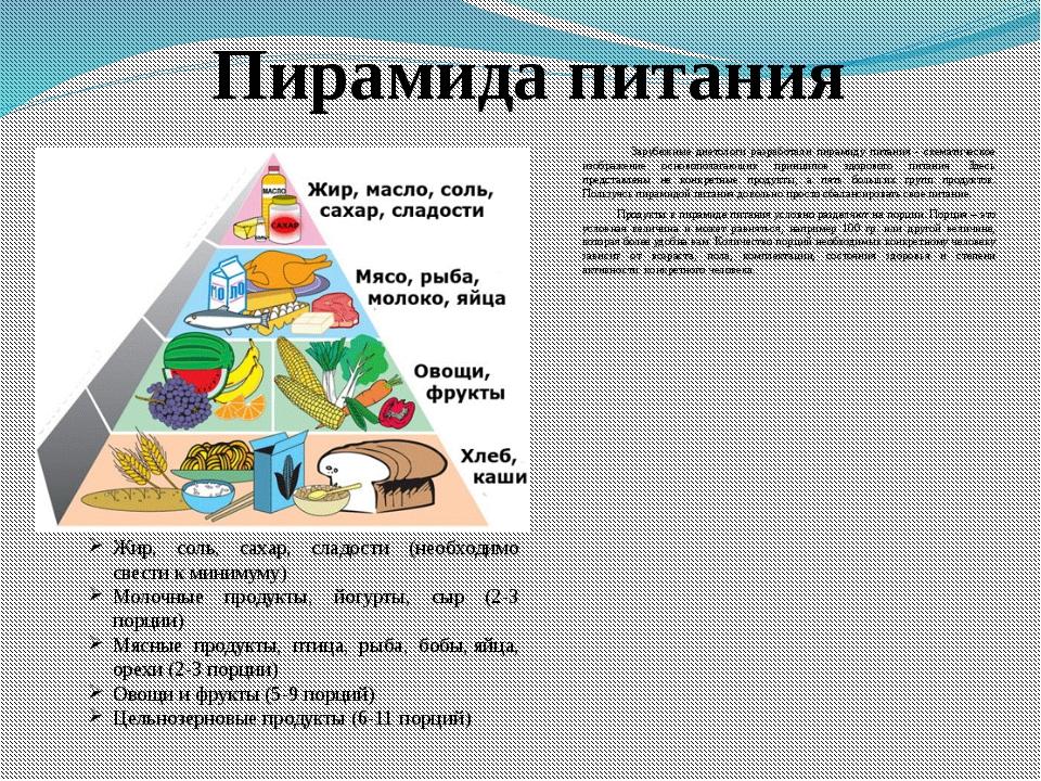 Особенности пищевой пирамиды для взрослых и детей