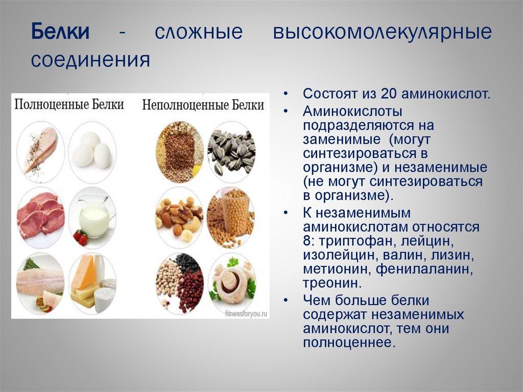 Для чего нужны белки: 12 полезных свойств белка для организма человека
