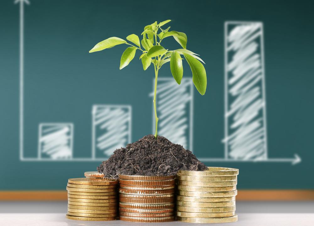 Инвестиции – что это такое простыми словами, для чего нужны, и с чего начать новичку создавать капитал