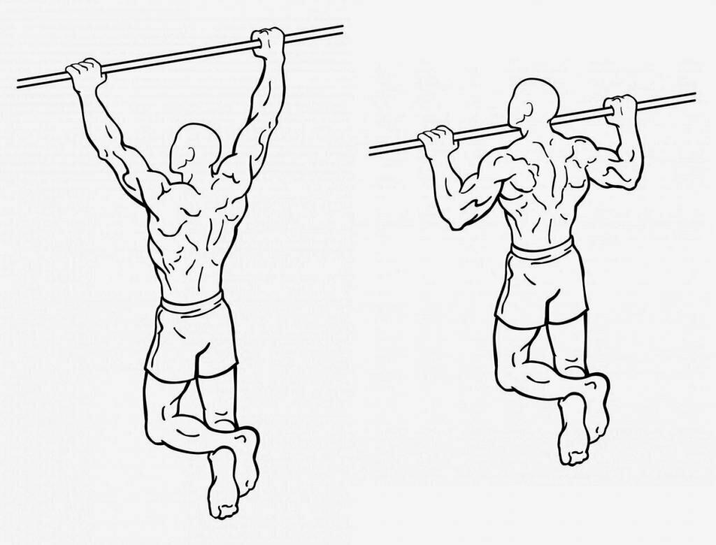 Подтягивания: все виды данного упражнения+техники для начинающих