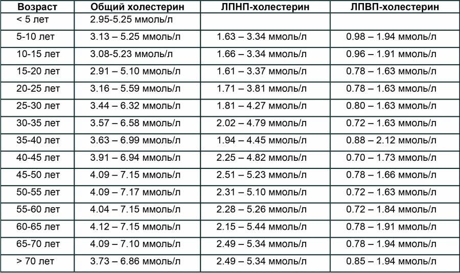 Уровень холестерина в крови от 5,0 до 5,9 ммоль/л - что это значит, нормы для женщин и мужчин по возрастам, способы снижения показателя