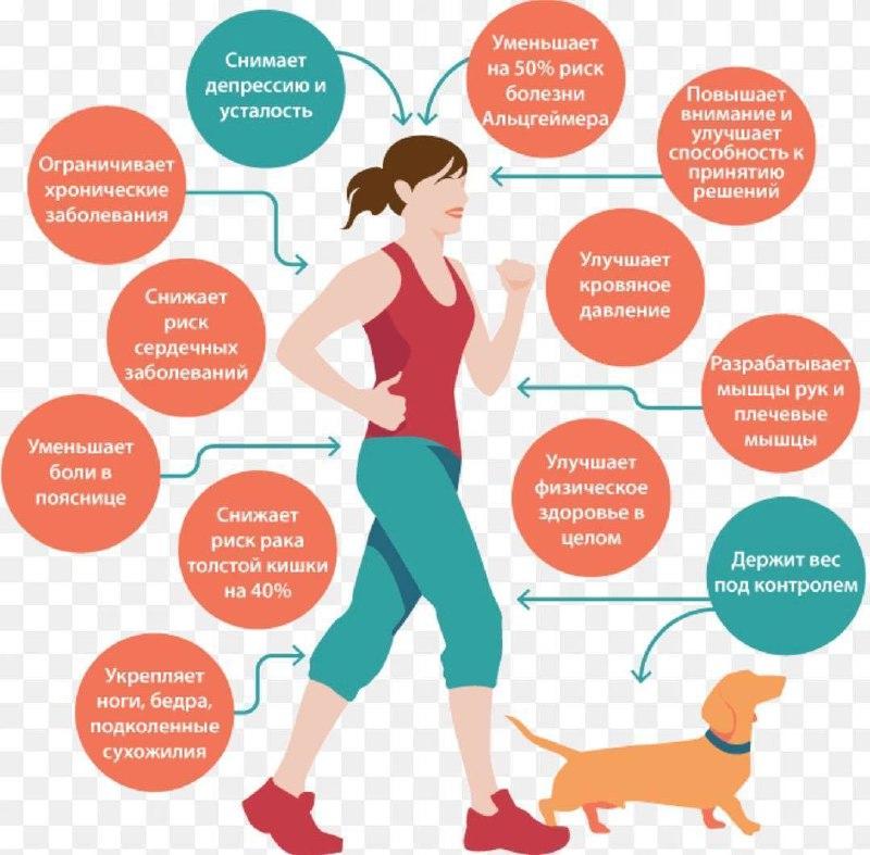 Польза от ходьбы пешком