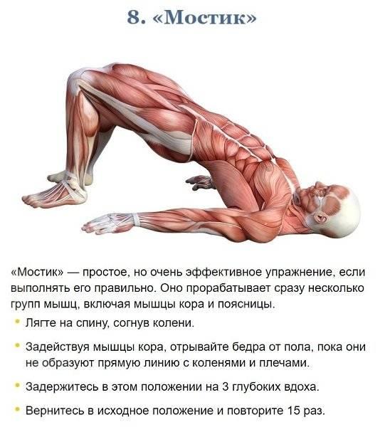 14 упражнений для проработки всего кора – зожник 14 упражнений для проработки всего кора – зожник