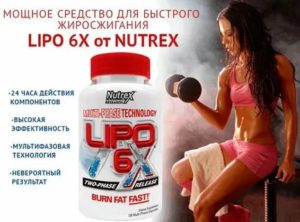 Жиросжигатели для похудения женщин: топ самых лучших, применение, эффективность, отзывы - tony.ru