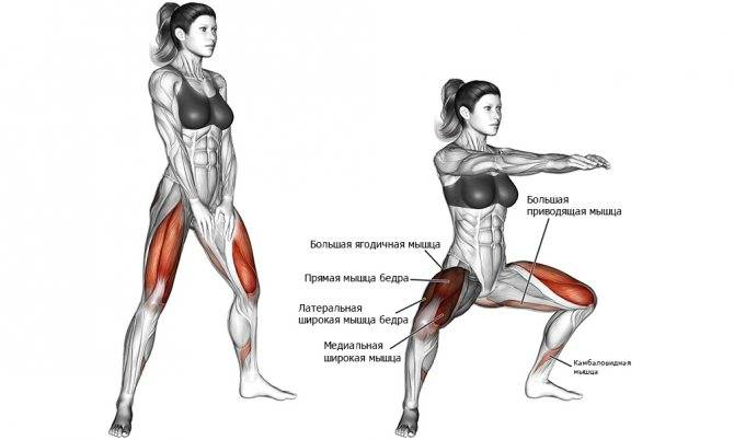 Болгарские выпады назад: сплит приседания с гантелями, в смите, со штангой, с шагом - техника выполнения, какие мышцы работают, как делать
