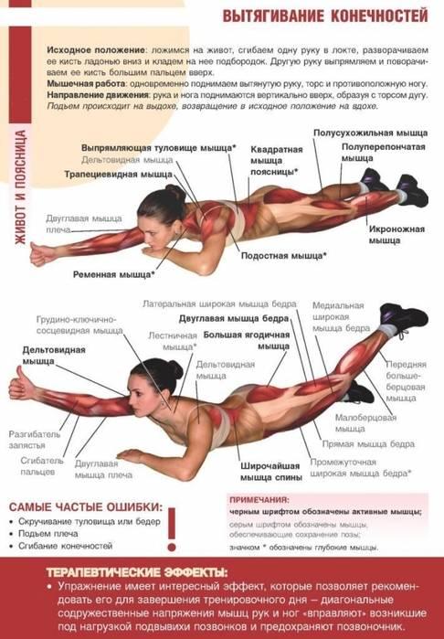 Мышцы-стабилизаторы: зачем и как их тренировать
