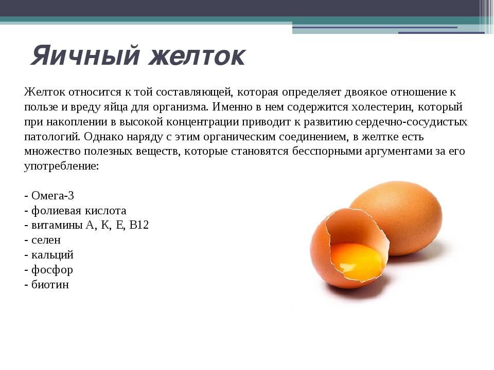 Зелёный желток у сырого яйца: причины, симптомы и лечение домашней птицы
