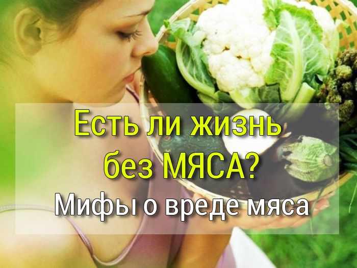 Вредно всё? разоблачение мифов о еде