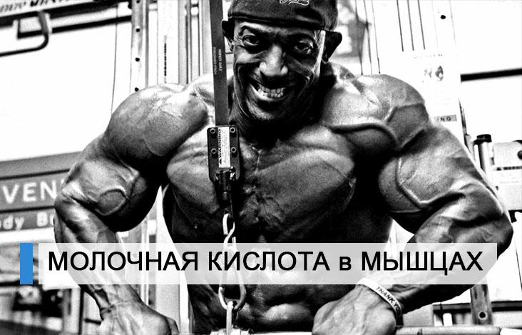 Как убрать молочную кислоту из мышц, что поможет лучше - баня, массаж, питание   xn--90acxpqg.xn--p1ai
