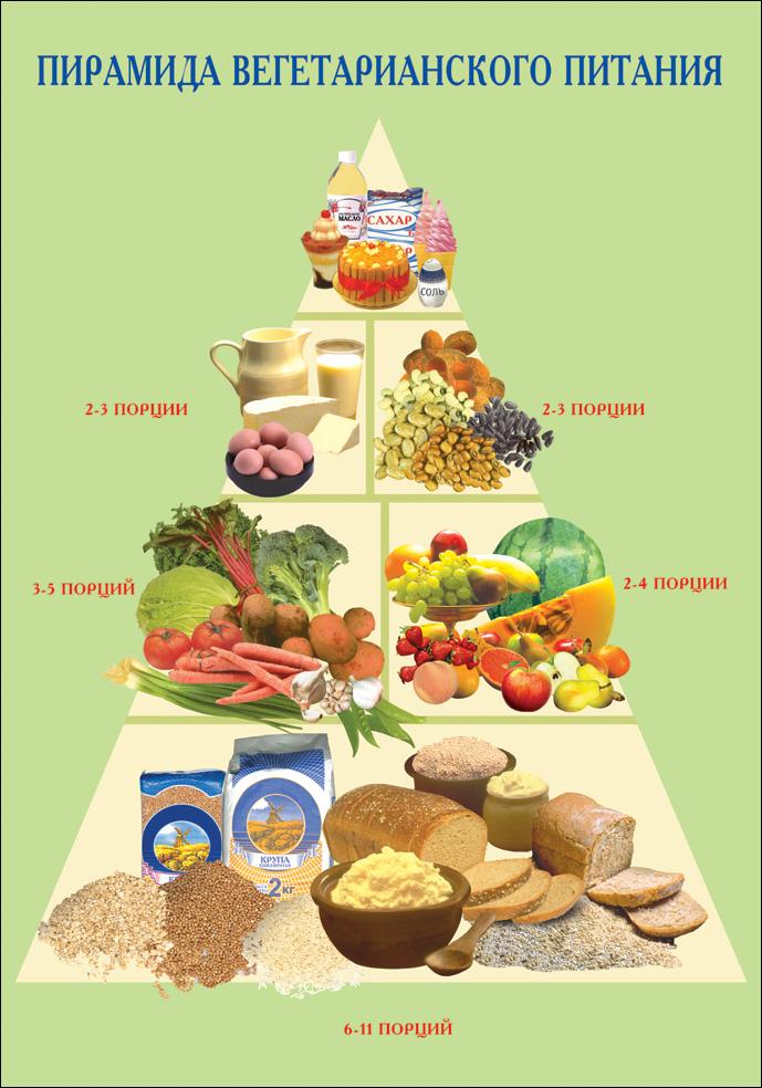 Вегетарианство: польза и вред для мужчин, женщин и детей, при беременности, отзывы
