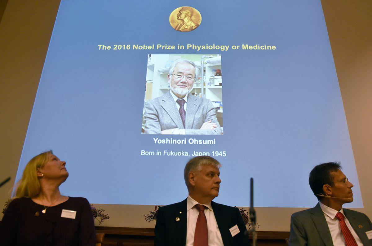 Аутофагия и голодание: за что дали нобелевскую премию японскому микробиологу