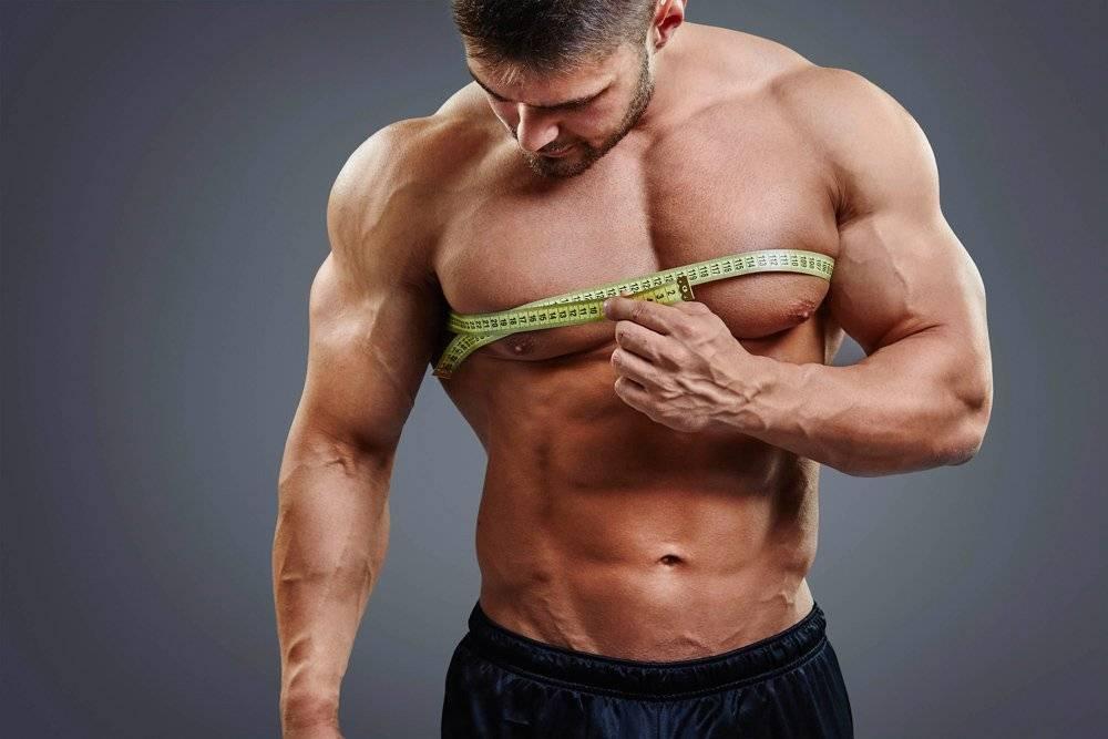 Как растут мышцы после тренировки: простым языком