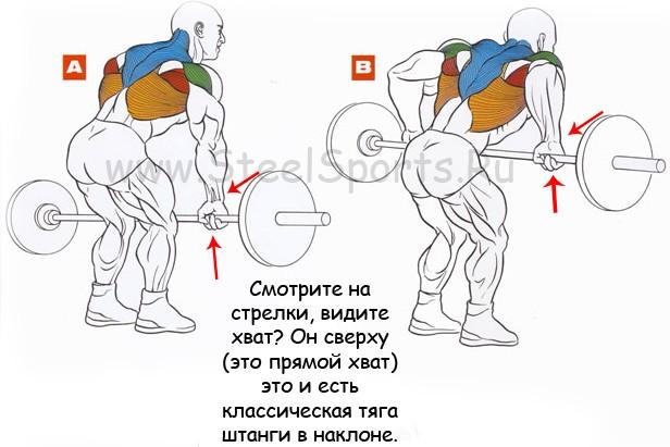 Тяга штанги в наклоне: техника выполнения узким и широким хватом, какие мышцы работают