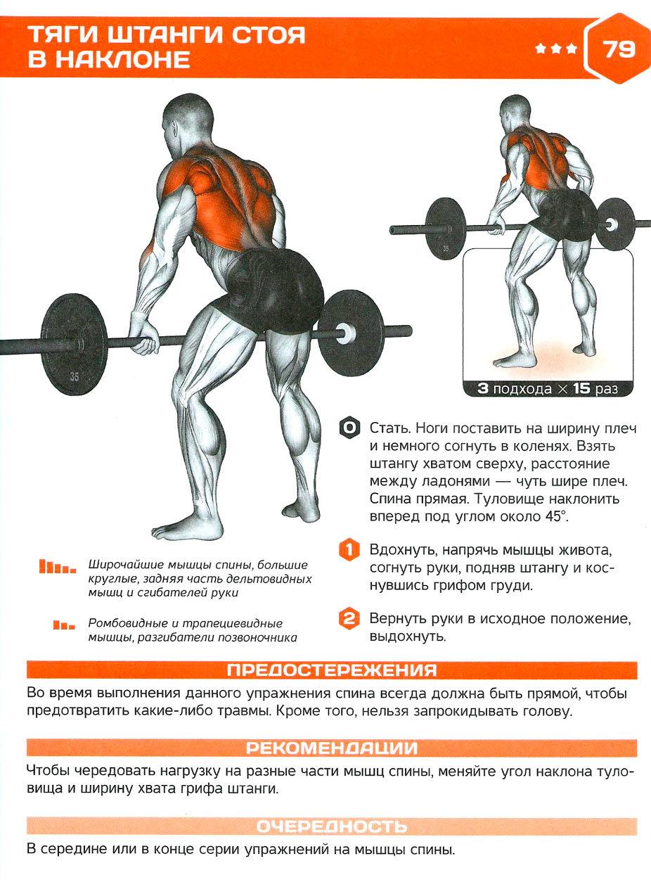 Какие бывают виды становой тяги?