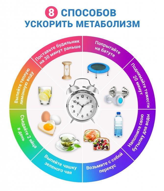 7 мифов и правда об обмене веществ для похудения: как укорить метаболизм и почему вам это не нужно