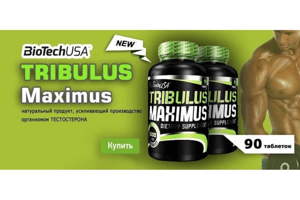 Tribulus от ostrovit: как принимать, состав и отзывы