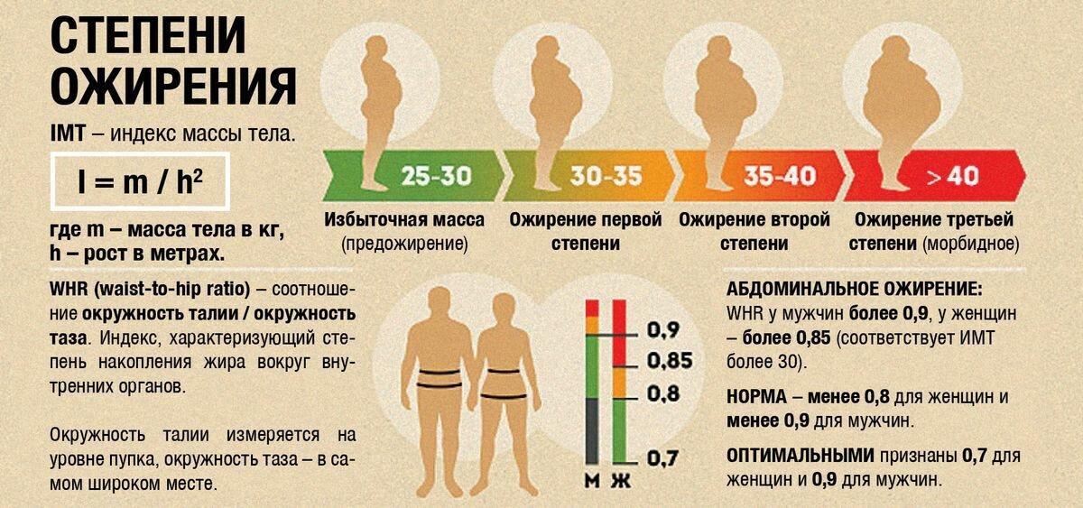 Избыточный вес: что надо делать для профилактики, питание и лечение