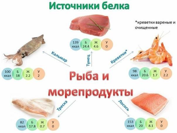 Рыба для спортсменов | фитнес | здоровье | спортивное питание | витамины | тренировки | новости