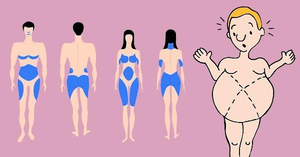 Откуда уходит жир в первую очередь при похудении у мужчин