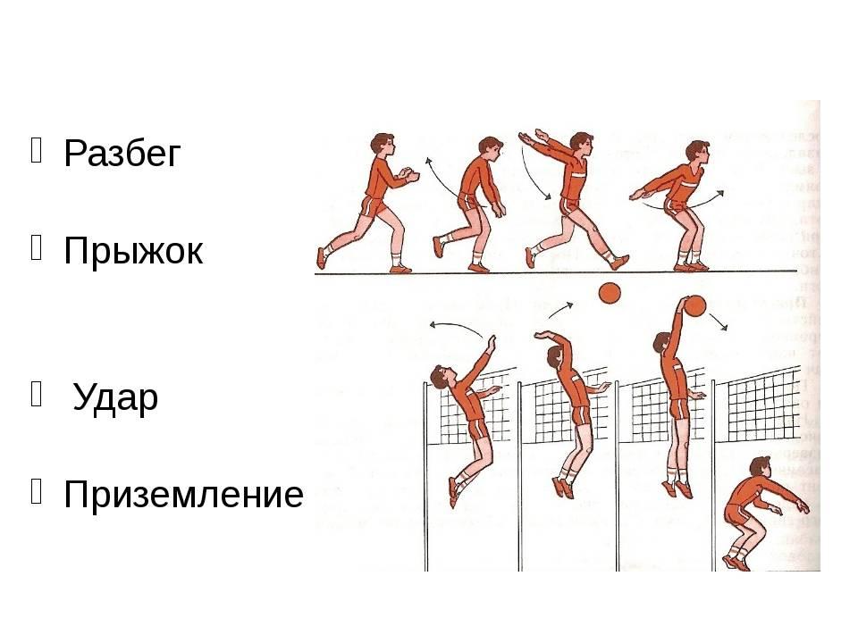 Как увеличить высоту прыжка: топ эффективных упражнений