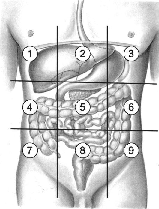 Дырка в животе у человека фото