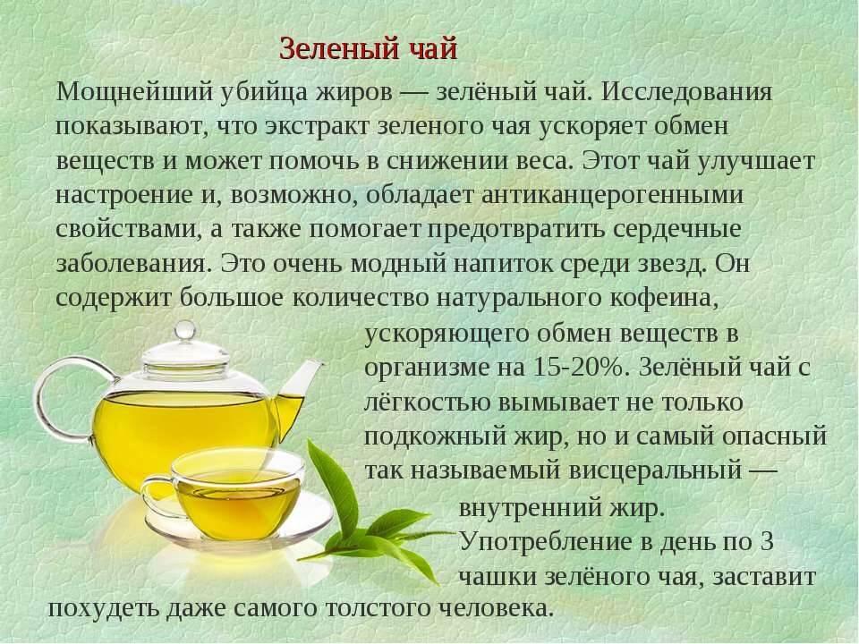 Польза и вред зеленого чая для печени и здоровья женщин и мужчин: