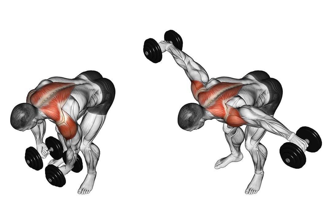Эффективные упражнения на дельты: широкие плечи теперь не проблема