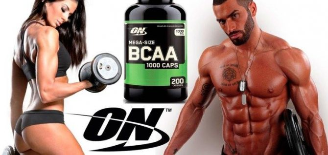 Рейтинг самых лучших аминокислот для роста мышц: отзывы о спортивном питании