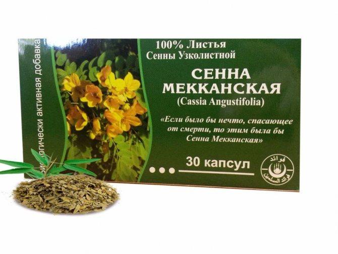 Сенна трава: действие, плюсы и минусы сенна трава для похудения