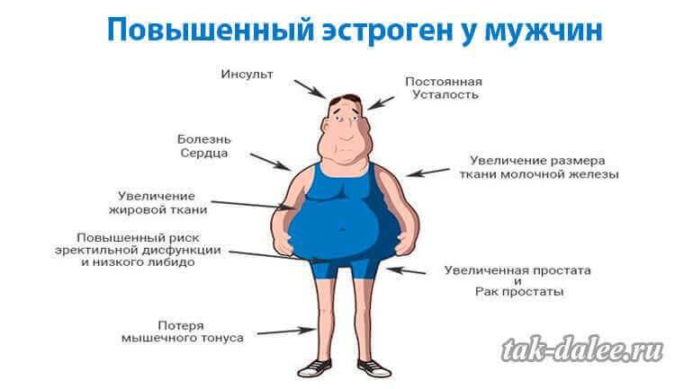 Эстроген и похудение: гормон, который мешает сбросить лишний вес