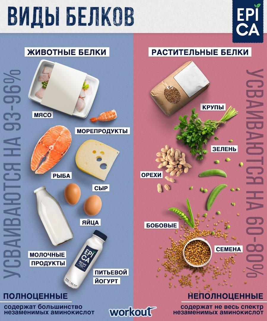 Животный белок. источники животного белка, его усвояемость, польза и вред. | здоровая жизнь
