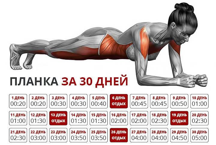 Идеальный пресс за 30 дней: программа тренировок, схема прокачки и техника выполнения упражнений