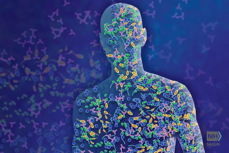 Микробиом: мир внутри нас