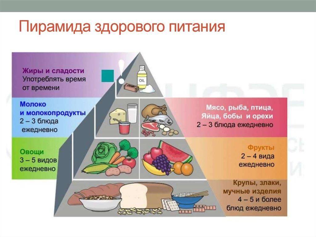Список продуктов для правильного питания и похудения (таблица)