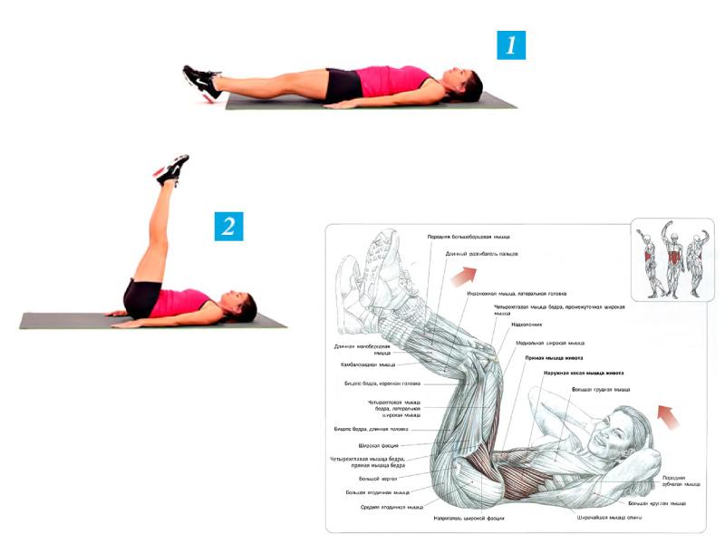 Подъем ног лежа на наклонной скамье. реактивно качаем мышцы пресса
