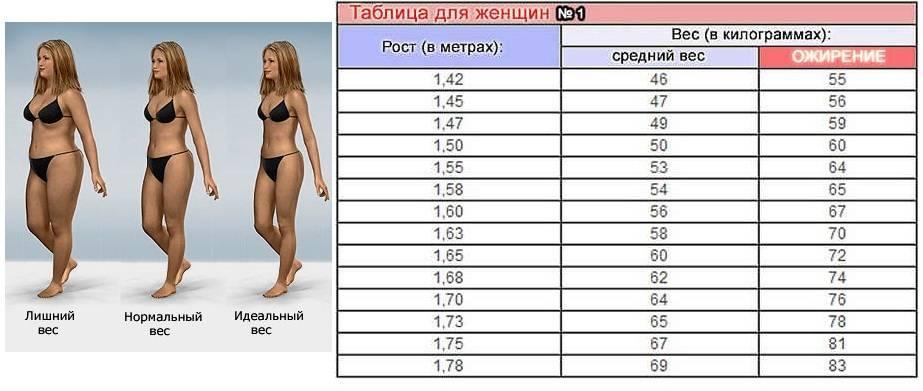 Калькулятор типа телосложения у женщин | медвизор