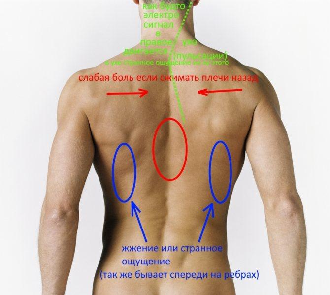 Боль под правой лопаткой сзади со спины - возможные причины и лечение!