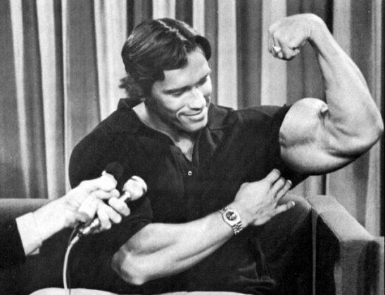 Бицепсы- система тренировок арнольда шварценеггера | бодибилдинг и фитнес программы тренировок, как накачать мышцы, сбросить лишний вес