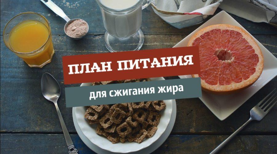 Диета для сжигания жира – меню для женщин и девушек, избавление от подкожного жира за счет особых продуктов | диеты и рецепты
