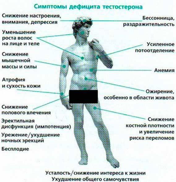 Низкий тестостерон у мужчин: симптомы, последствия, лечение