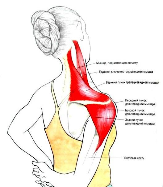 Мышечное напряжение в ногах симптомы и лечение - лечение