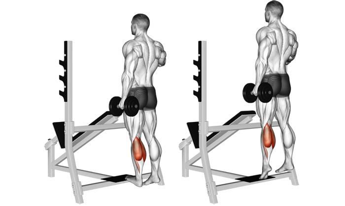Упражнение «ослик» для икроножных мышц