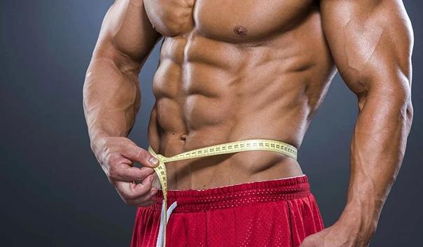 Эффективное жиросжигание: правила, тренировки, питание | power-body.ru